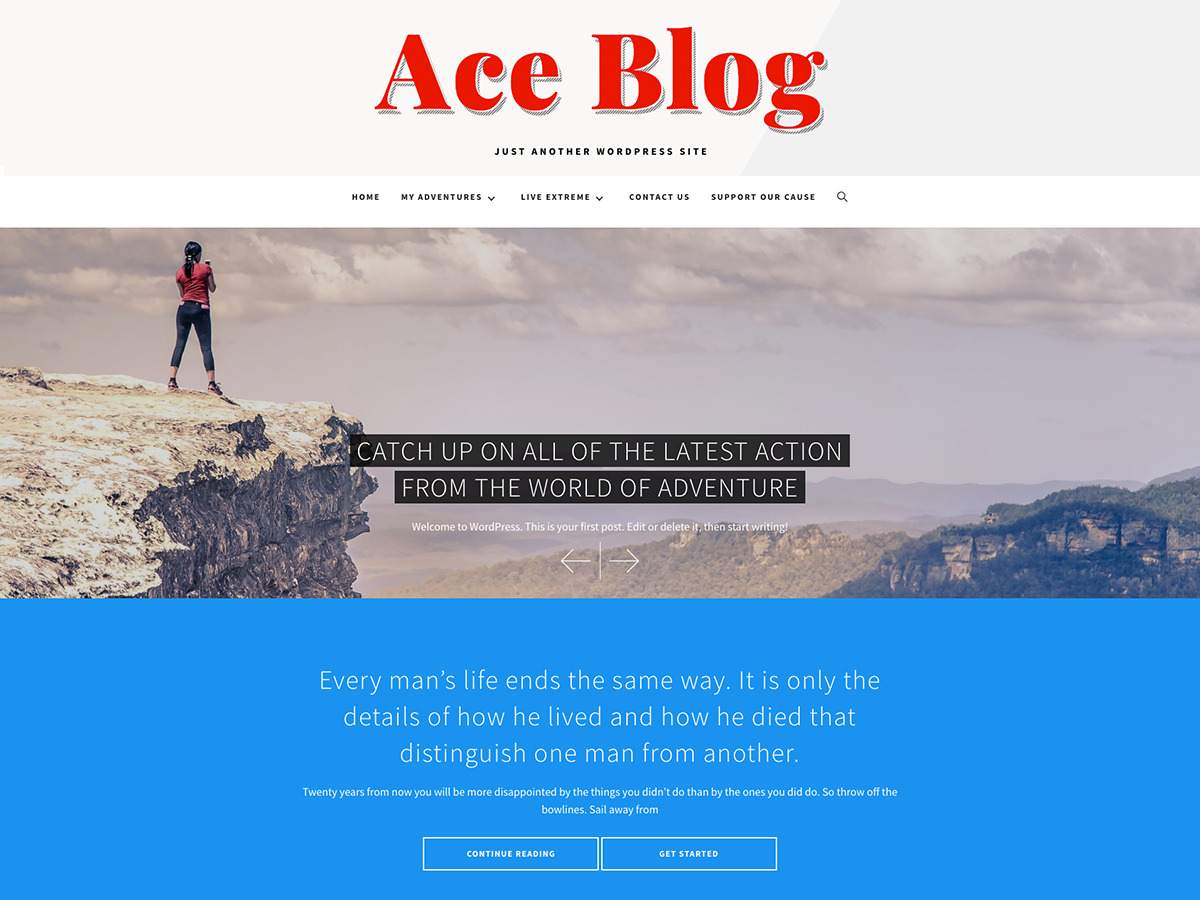 Ace Blog Preview Wordpress Theme - Rating, Reviews, Preview, Demo & Download