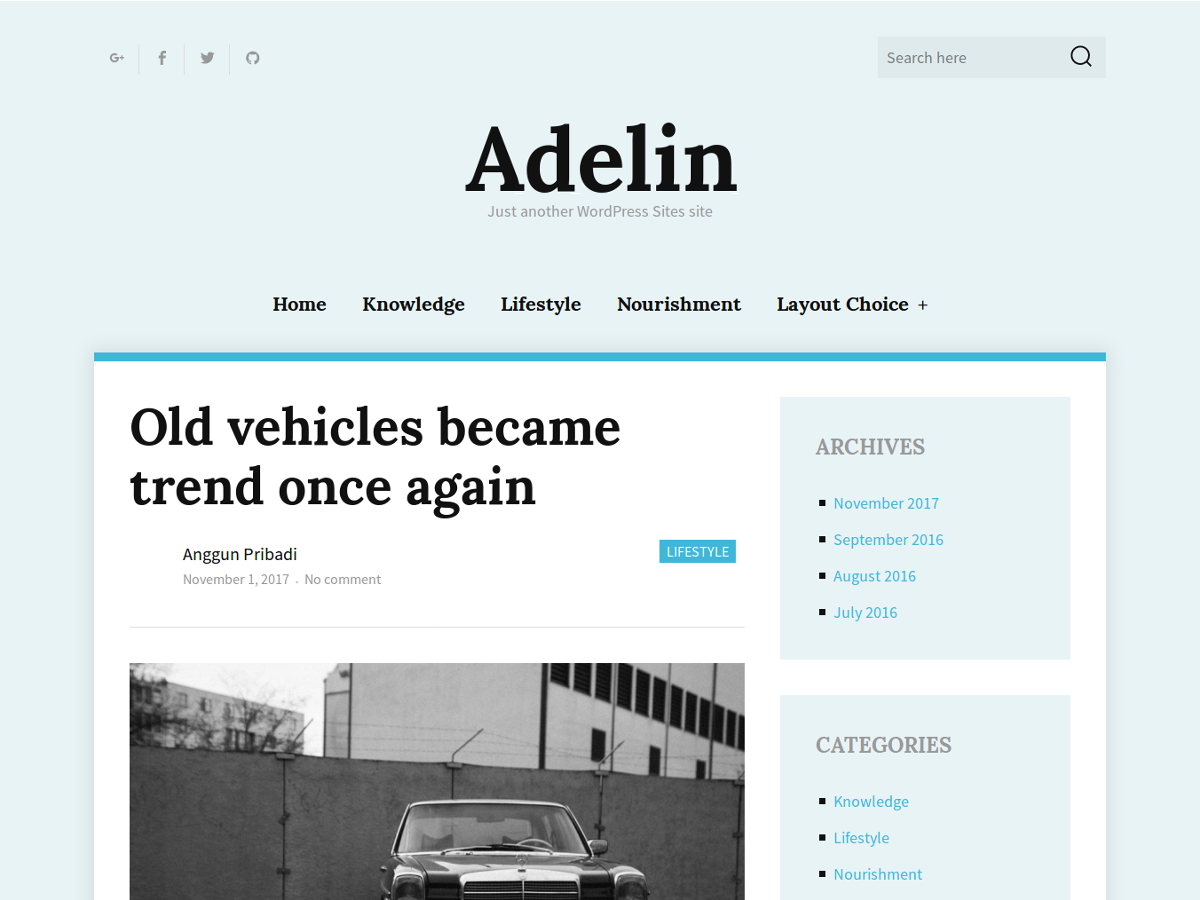 Adelin Preview Wordpress Theme - Rating, Reviews, Preview, Demo & Download
