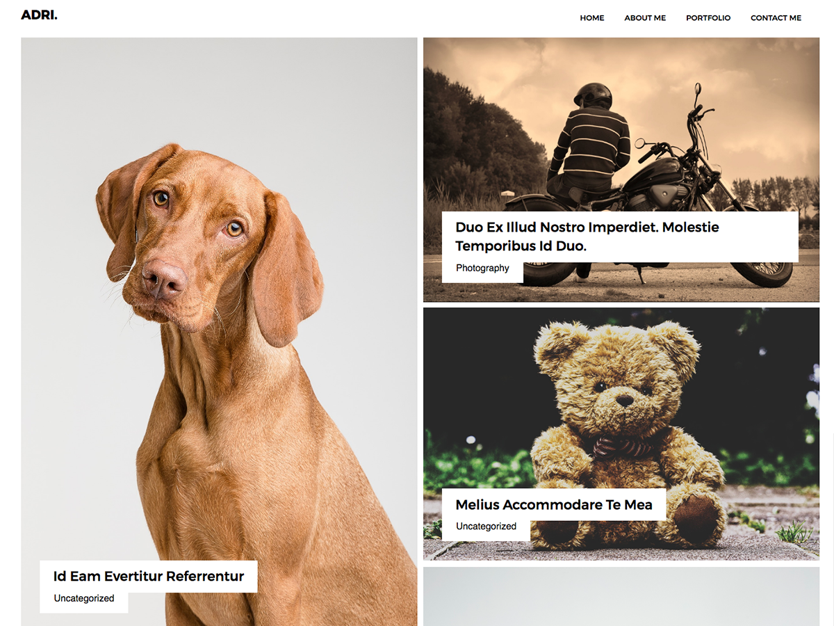 Adri Preview Wordpress Theme - Rating, Reviews, Preview, Demo & Download