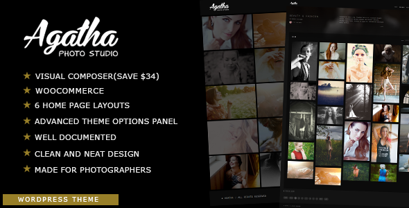 Agatha Preview Wordpress Theme - Rating, Reviews, Preview, Demo & Download