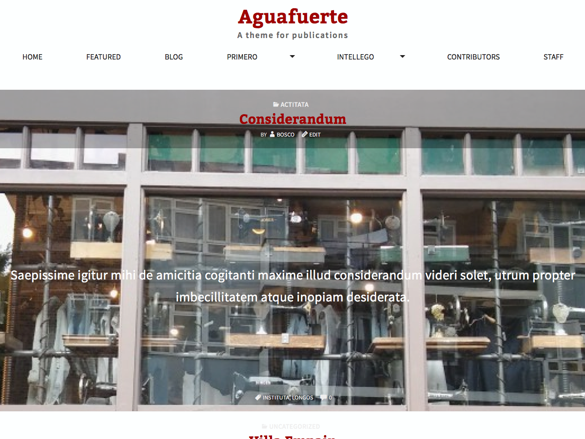 Aguafuerte Preview Wordpress Theme - Rating, Reviews, Preview, Demo & Download