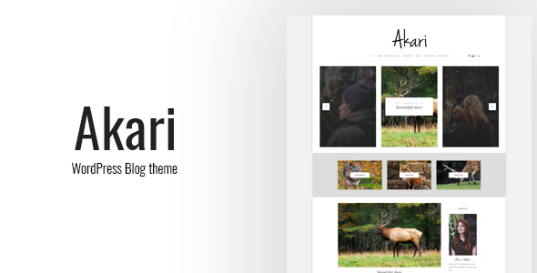 Akari Preview Wordpress Theme - Rating, Reviews, Preview, Demo & Download