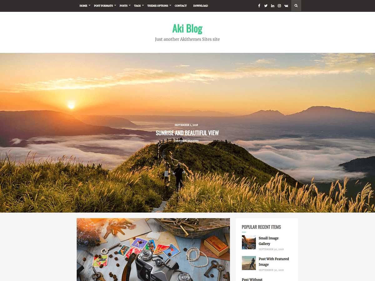 Aki Blog Preview Wordpress Theme - Rating, Reviews, Preview, Demo & Download
