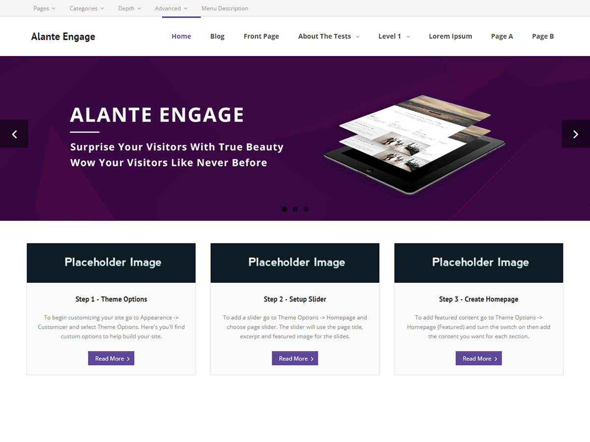 Alante Engage Preview Wordpress Theme - Rating, Reviews, Preview, Demo & Download