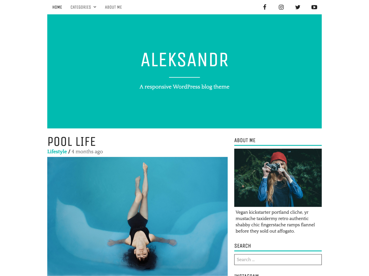 Aleksandr Preview Wordpress Theme - Rating, Reviews, Preview, Demo & Download