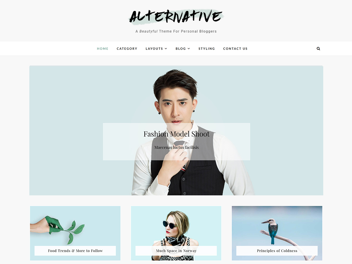Alternative Preview Wordpress Theme - Rating, Reviews, Preview, Demo & Download