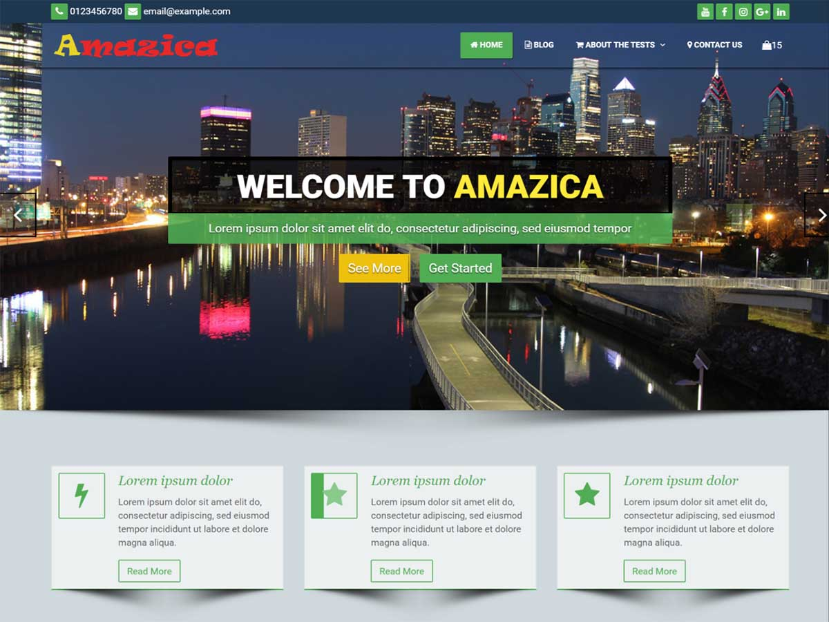 Amazica Business Preview Wordpress Theme - Rating, Reviews, Preview, Demo & Download