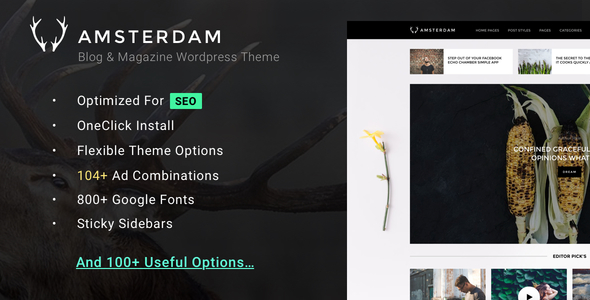Amsterdam Preview Wordpress Theme - Rating, Reviews, Preview, Demo & Download