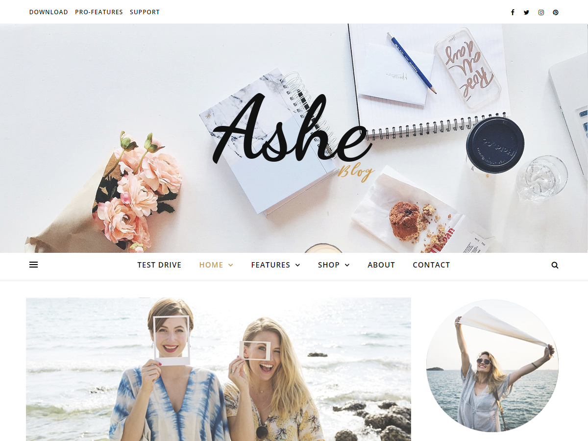 Ashe Preview Wordpress Theme - Rating, Reviews, Preview, Demo & Download