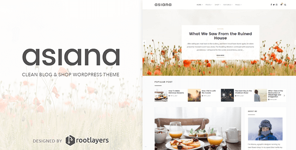 Asiana Preview Wordpress Theme - Rating, Reviews, Preview, Demo & Download