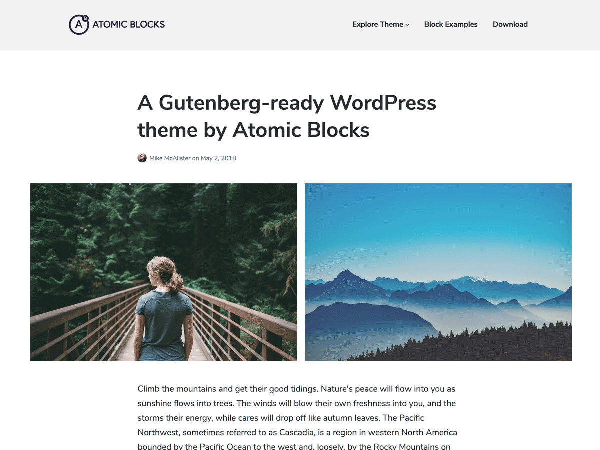 Atomic Blocks Preview Wordpress Theme - Rating, Reviews, Preview, Demo & Download