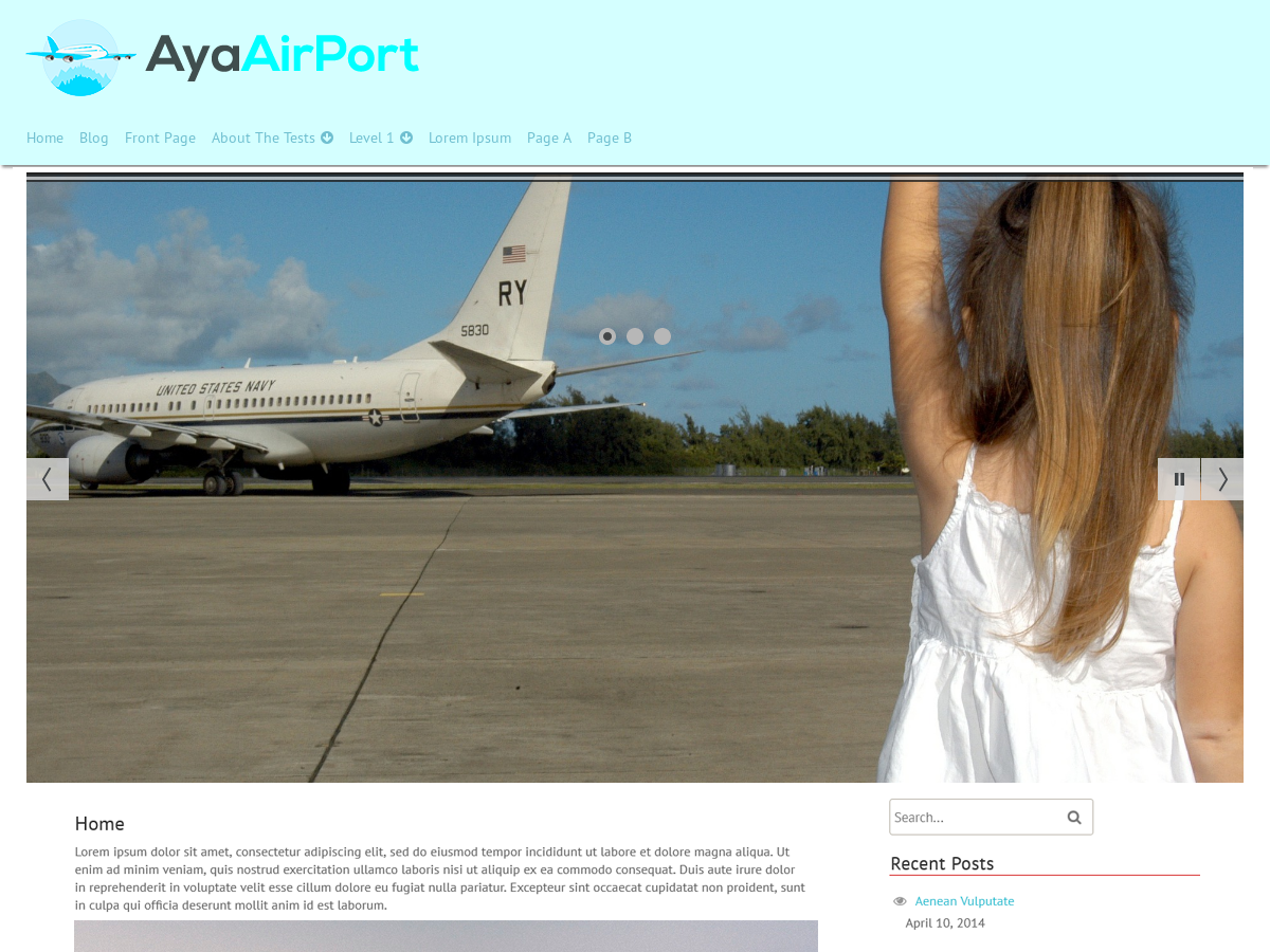 AyaAirPort Preview Wordpress Theme - Rating, Reviews, Preview, Demo & Download