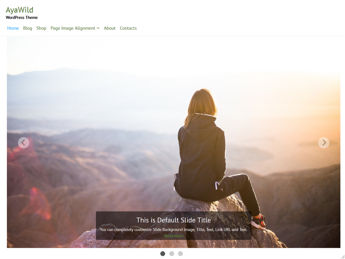 AyaWild Preview Wordpress Theme - Rating, Reviews, Preview, Demo & Download