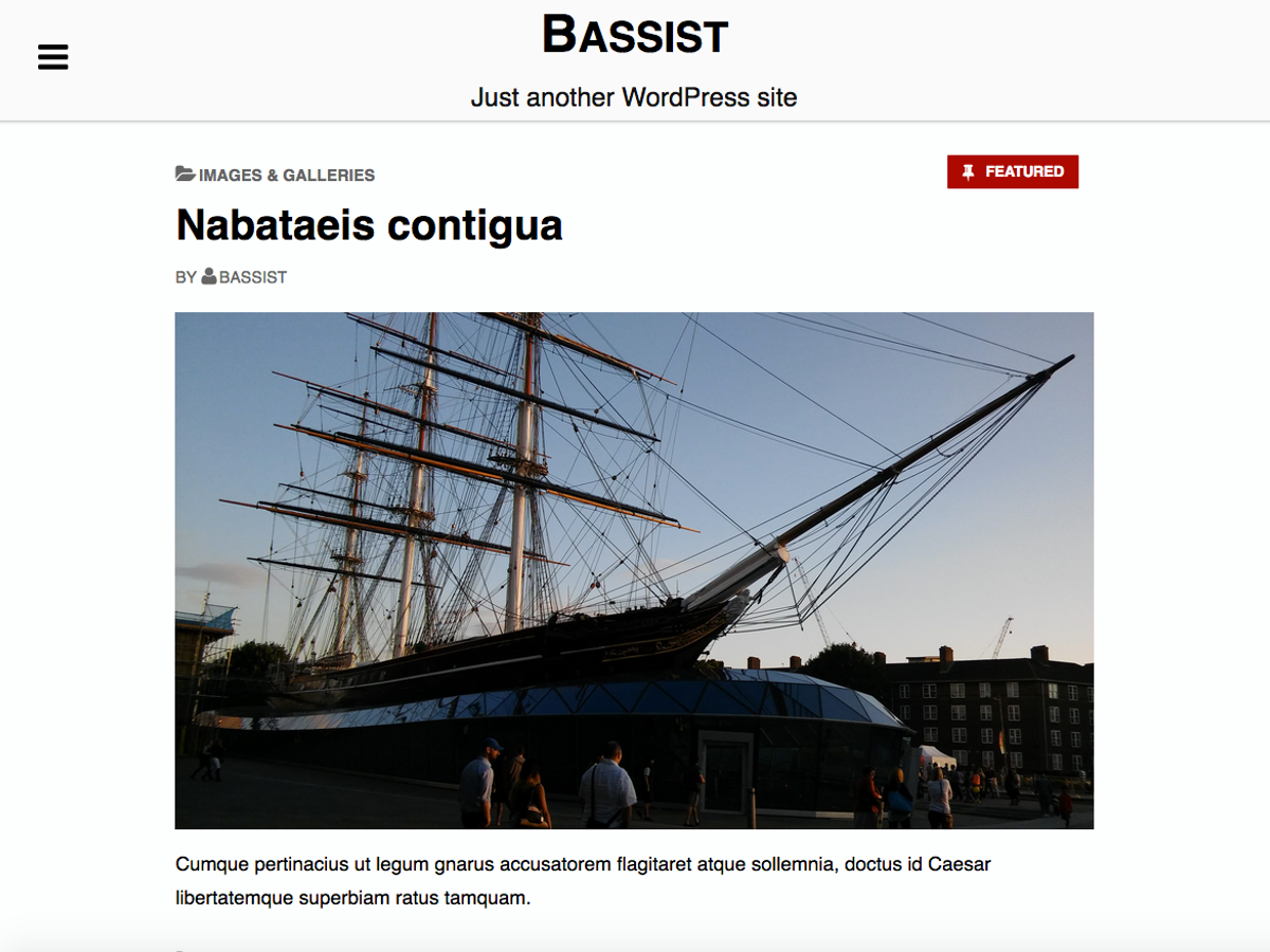 Bassist Preview Wordpress Theme - Rating, Reviews, Preview, Demo & Download