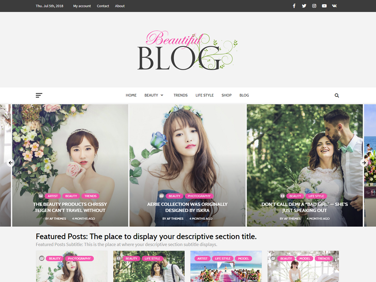 Beautiful Blog Preview Wordpress Theme - Rating, Reviews, Preview, Demo & Download