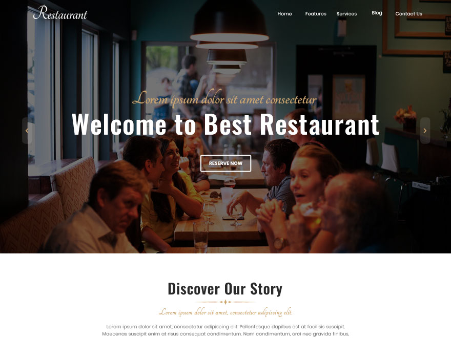 Best Restaurant Preview Wordpress Theme - Rating, Reviews, Preview, Demo & Download