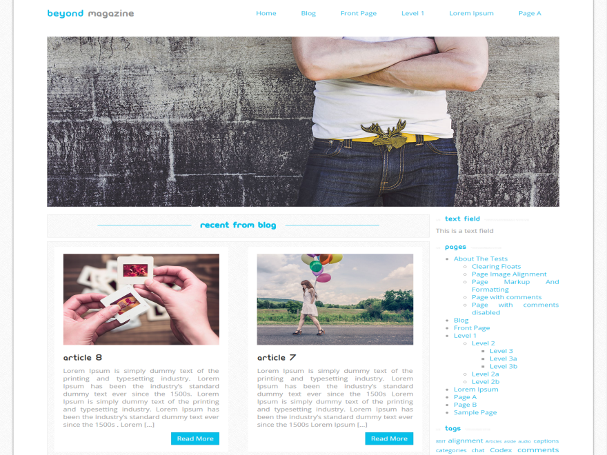 Beyond Magazine Preview Wordpress Theme - Rating, Reviews, Preview, Demo & Download