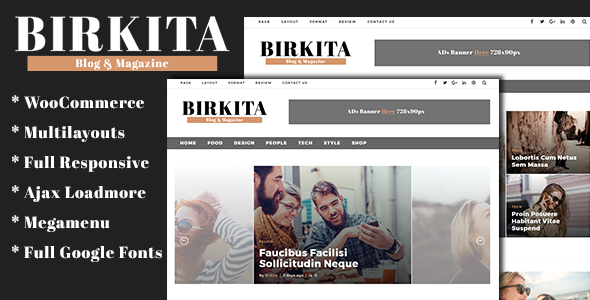Birkita Preview Wordpress Theme - Rating, Reviews, Preview, Demo & Download