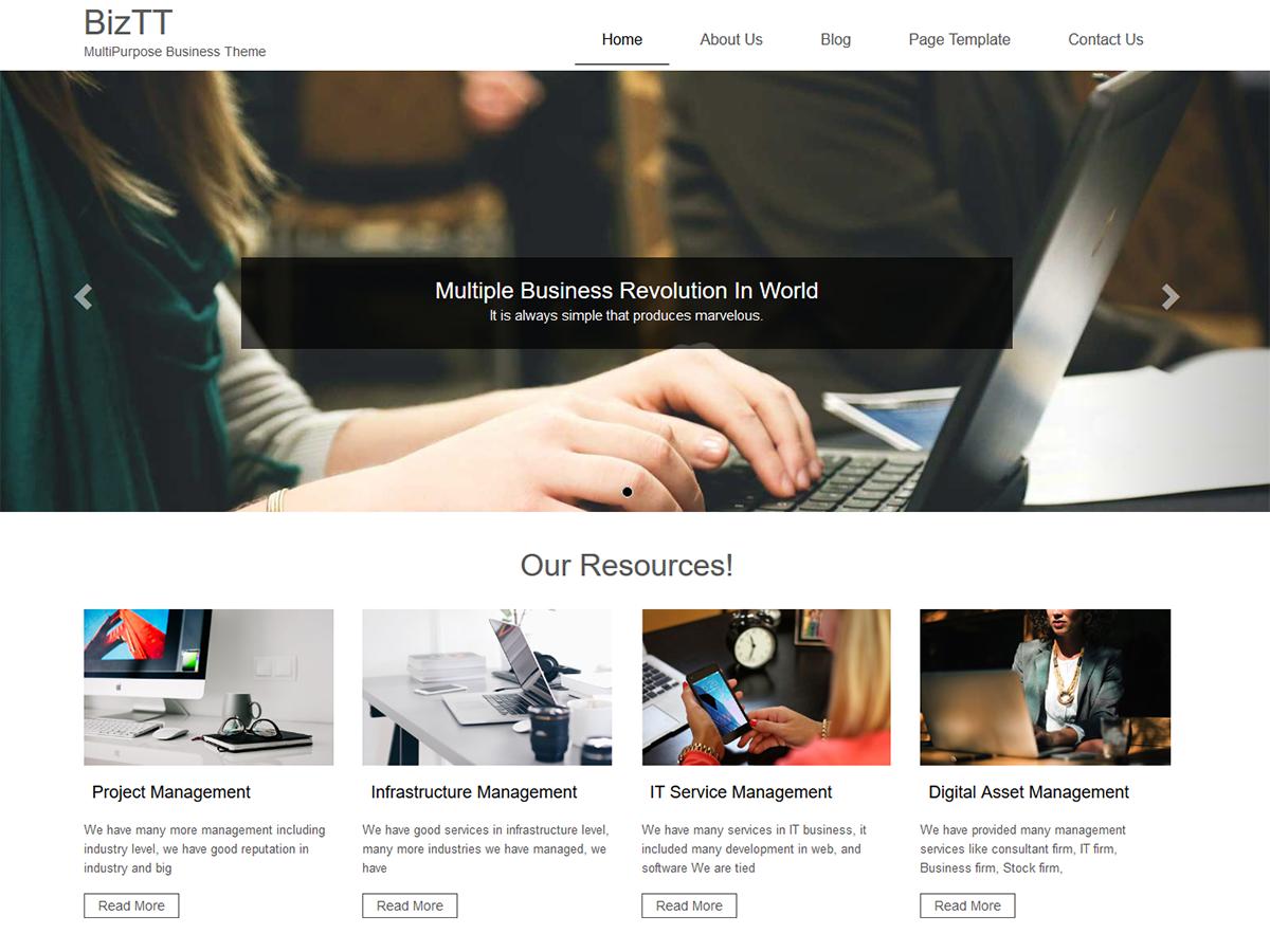BizTT Preview Wordpress Theme - Rating, Reviews, Preview, Demo & Download