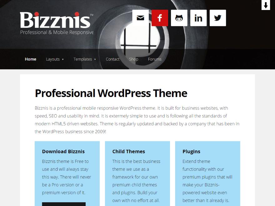 Bizznis Preview Wordpress Theme - Rating, Reviews, Preview, Demo & Download