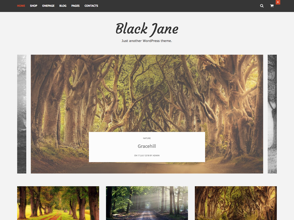 Black Jane Preview Wordpress Theme - Rating, Reviews, Preview, Demo & Download