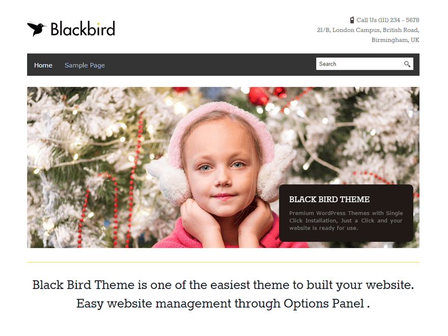 BlackBird Preview Wordpress Theme - Rating, Reviews, Preview, Demo & Download