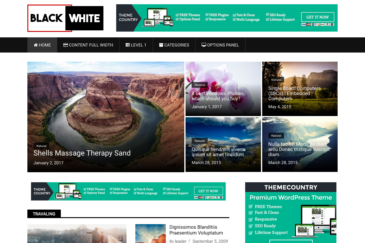 BlackWhite Lite Preview Wordpress Theme - Rating, Reviews, Preview, Demo & Download