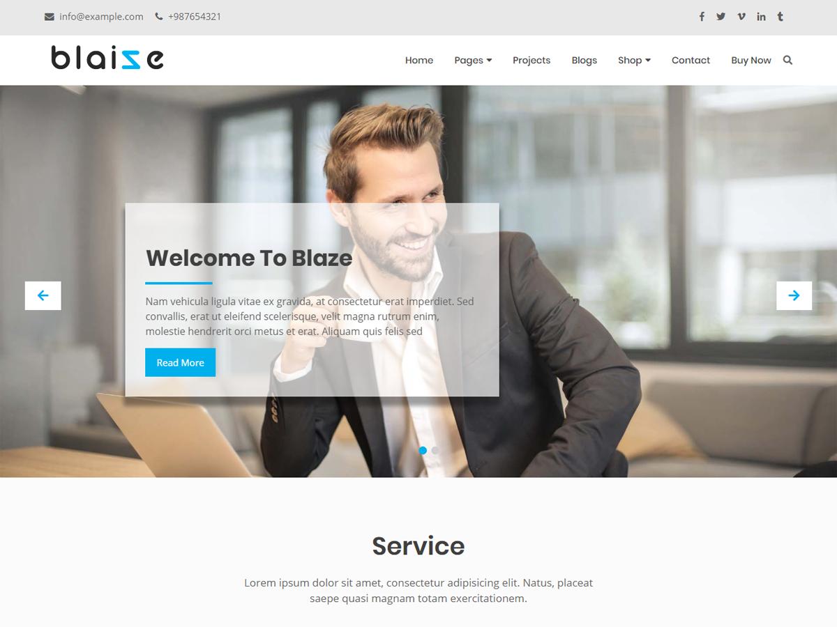 Blaize Preview Wordpress Theme - Rating, Reviews, Preview, Demo & Download