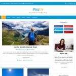 Blog Era