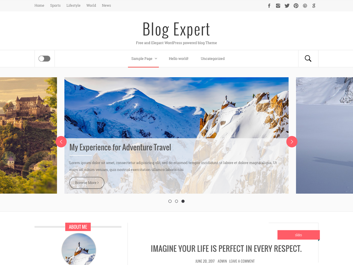 Blog Expert Preview Wordpress Theme - Rating, Reviews, Preview, Demo & Download
