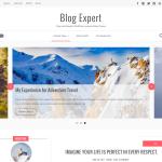 Blog Expert
