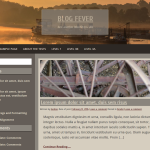 Blog Fever