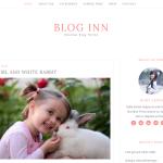 Blog Inn