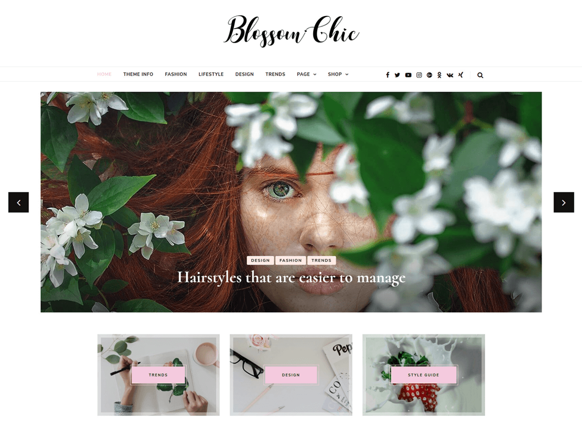 Blossom Chic Preview Wordpress Theme - Rating, Reviews, Preview, Demo & Download
