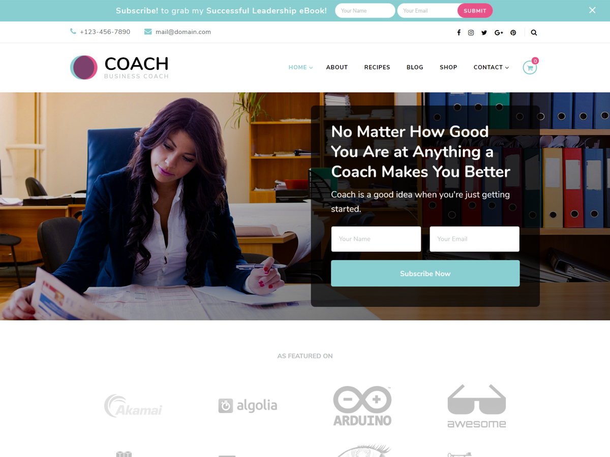 Blossom Coach Preview Wordpress Theme - Rating, Reviews, Preview, Demo & Download