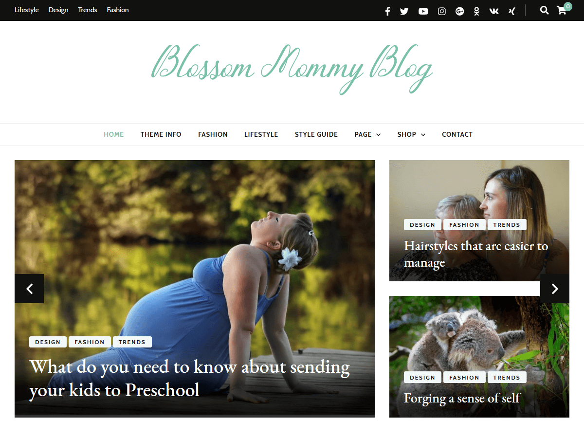 Blossom Mommy Preview Wordpress Theme - Rating, Reviews, Preview, Demo & Download