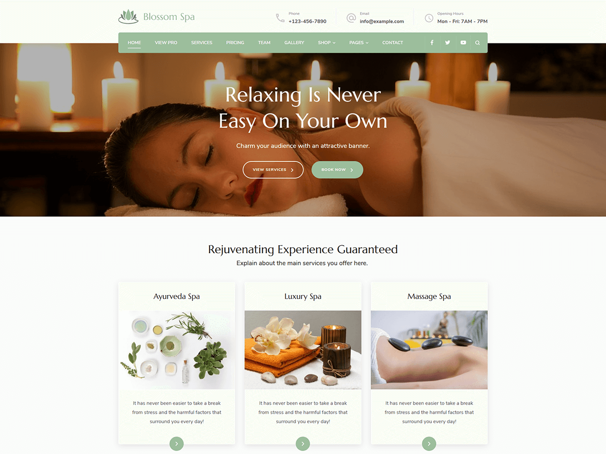 Blossom Spa Preview Wordpress Theme - Rating, Reviews, Preview, Demo & Download