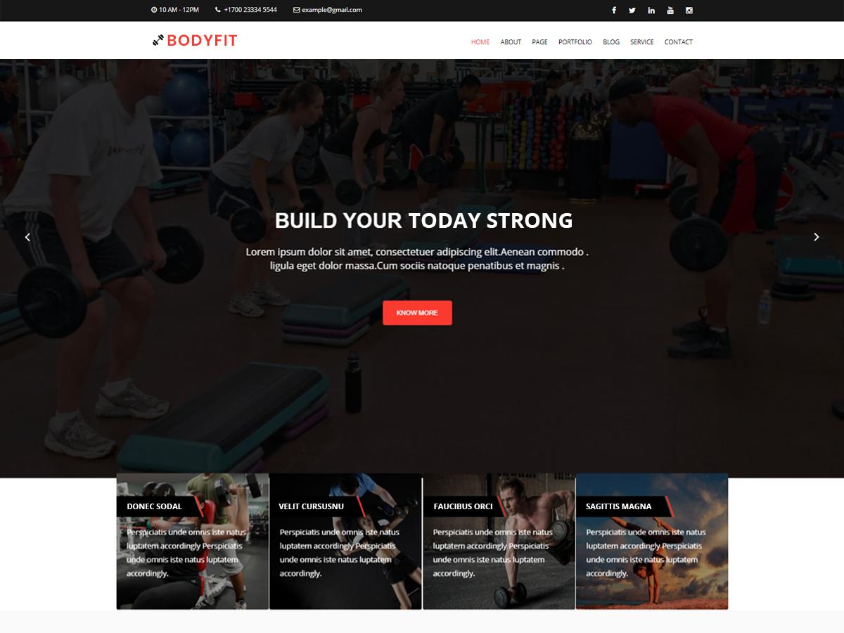 Bodyfit Preview Wordpress Theme - Rating, Reviews, Preview, Demo & Download