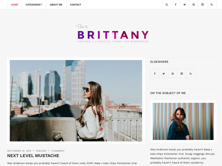 Brittany Light Preview Wordpress Theme - Rating, Reviews, Preview, Demo & Download