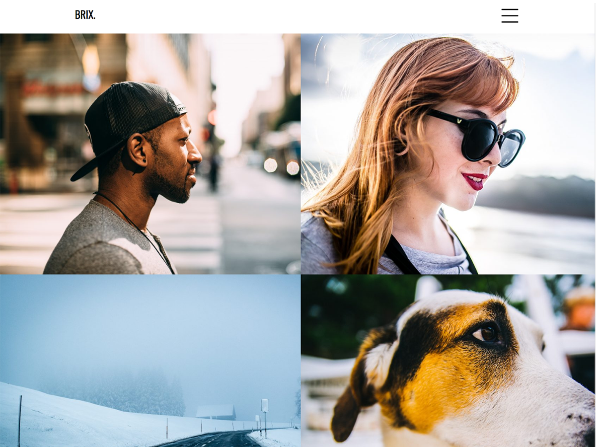 Brix Portfolio Preview Wordpress Theme - Rating, Reviews, Preview, Demo & Download