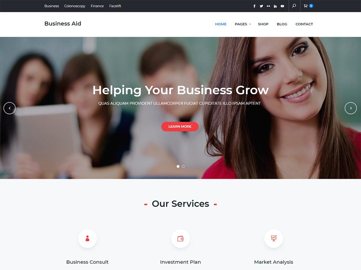Business Aid Preview Wordpress Theme - Rating, Reviews, Preview, Demo & Download