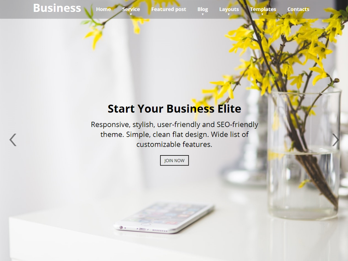 Business Elite Preview Wordpress Theme - Rating, Reviews, Preview, Demo & Download