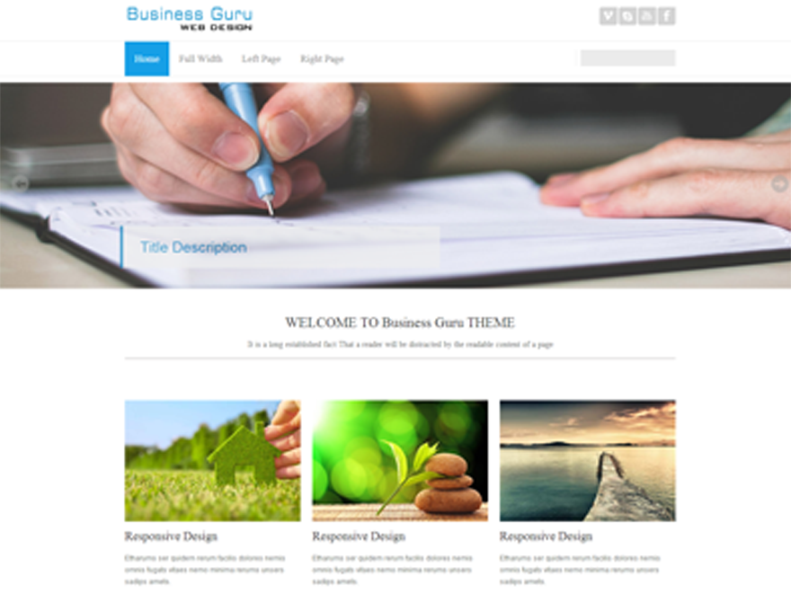 Business Guru Preview Wordpress Theme - Rating, Reviews, Preview, Demo & Download
