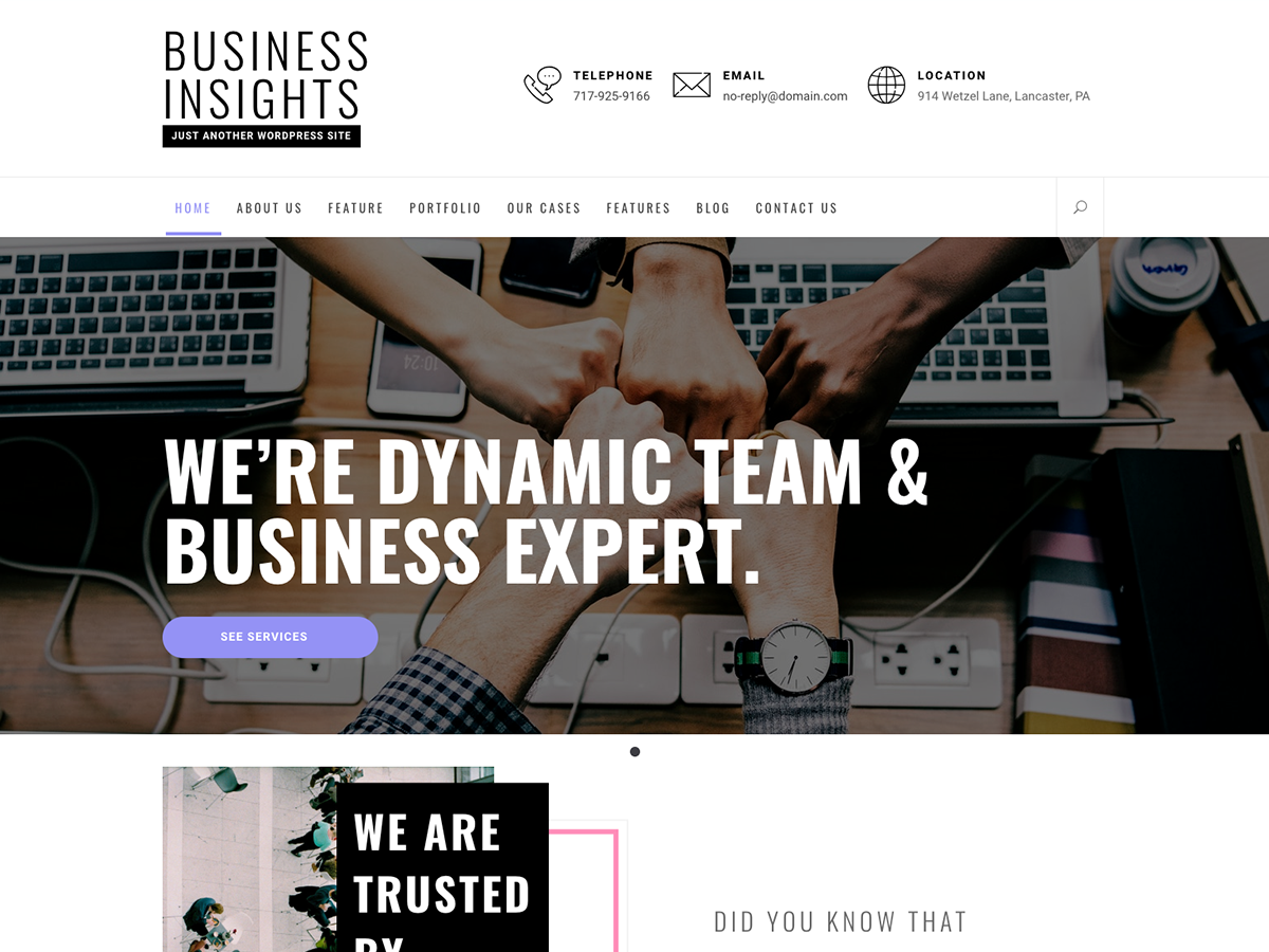 Business Insights Preview Wordpress Theme - Rating, Reviews, Preview, Demo & Download