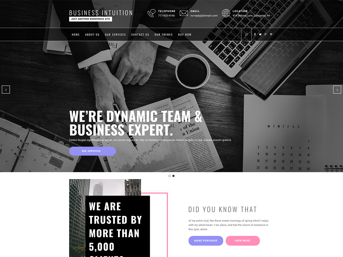 Business Intuition Preview Wordpress Theme - Rating, Reviews, Preview, Demo & Download