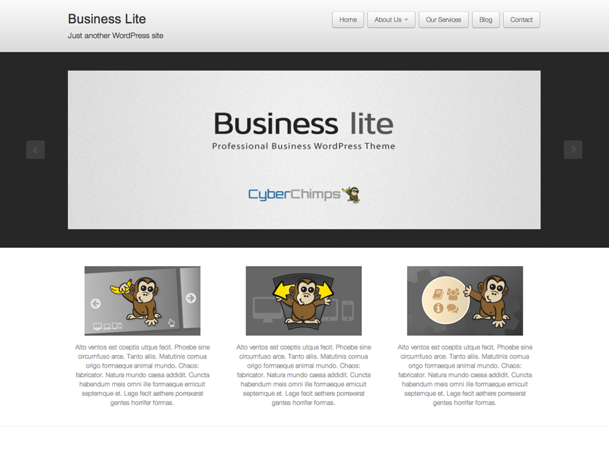 Business Lite Preview Wordpress Theme - Rating, Reviews, Preview, Demo & Download