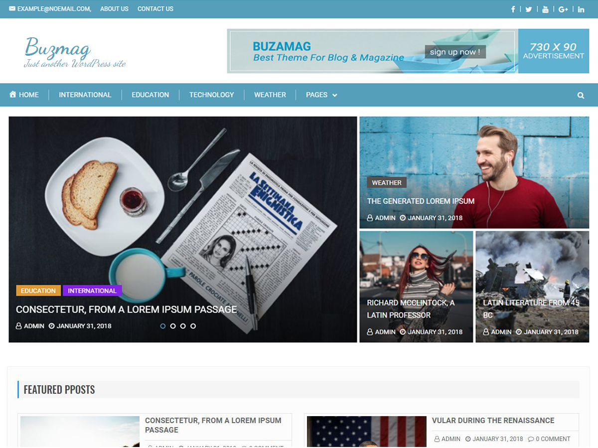 Buzmag Preview Wordpress Theme - Rating, Reviews, Preview, Demo & Download