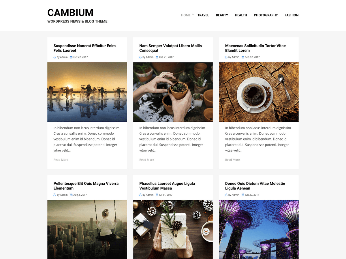 Cambium Preview Wordpress Theme - Rating, Reviews, Preview, Demo & Download
