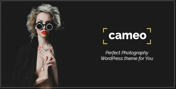 Cameo Preview Wordpress Theme - Rating, Reviews, Preview, Demo & Download