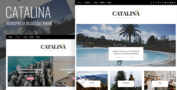 Catalina Preview Wordpress Theme - Rating, Reviews, Preview, Demo & Download